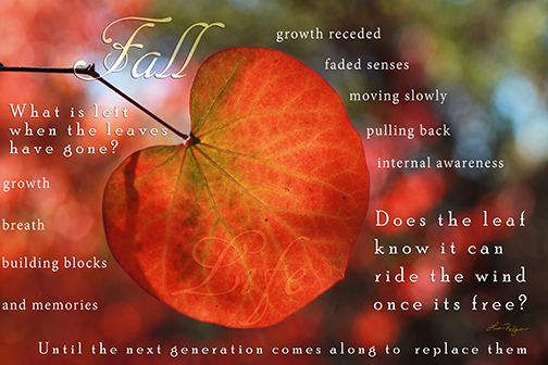 fall poem 2013-web